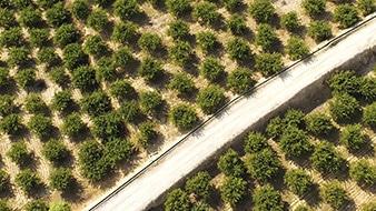 Agricultura y medioambiente soluciones - Zenit Drones