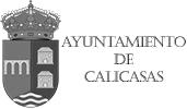 Ayto-Calicasas--Zenit-Drones--