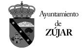 Ayuntamiento_Zujar---Zenit-Drones--.jpg